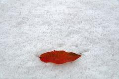 Первый поцелуй, первый снег Стоковое Фото