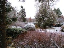 Первый снег, ботанический сад, Kamenets Podolskiy, Украина Стоковое Изображение RF