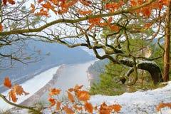 Первый снег в горах около реки Эльбы стоковые фото