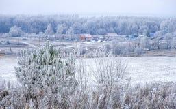 Первый снег в деревне Стоковые Изображения