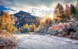 Первый снег в Naturpark Fanes-Sennes-Prags Стоковая Фотография RF