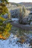 первый снежок гор Стоковая Фотография RF