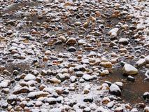 первый снежок Справочная информация Стоковая Фотография RF