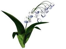 перевод 3d куста цветка изолированный на белизне можно использовать для fo Стоковые Изображения