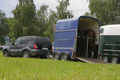 перевозка лошадей Стоковые Изображения