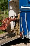 перевозка трейлера лошади Стоковая Фотография
