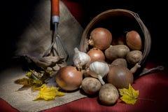 Переворачиванная корзина свежих овощей Стоковая Фотография