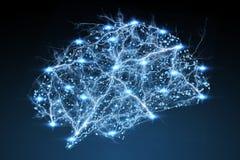 Перевод человеческого мозга 3D рентгеновского снимка цифров иллюстрация вектора