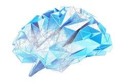 Перевод человеческого мозга 3D рентгеновского снимка цифров бесплатная иллюстрация
