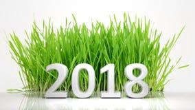 перевод 3D 2018 с зеленой травой Стоковые Фотографии RF