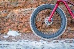 Переднее колесо тучного велосипеда на следе зимы стоковые изображения