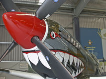 переднее supermarine VIII spitfire mk Стоковые Фотографии RF