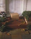 передние шаги парцеллы дома Стоковое Изображение