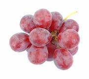 передний взгляд виноградин Стоковые Фотографии RF
