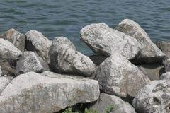 передний план состава скалы двинул море заводов некоторый вертикальный ветер Стоковое фото RF