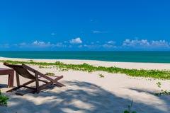 Передний план шезлонга и пальм на тропическом пляже, остров рая на праздники и релаксация стоковое изображение