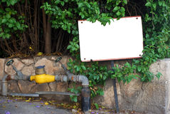 передняя зеленая белизна знака Стоковая Фотография RF