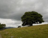 Перед штормом приезжает стоковое изображение rf