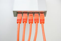переключатель сети кабелей сетчатый Стоковые Фото