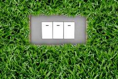 переключатель травы кнопки Стоковое Фото