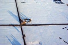 перекрестки Монтана Стоковые Фото