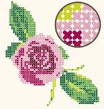 Перекрестная вышивка Rose стежком Стоковое Изображение