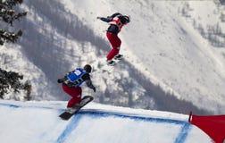 перекрестный мир snowboard чашки Стоковая Фотография RF