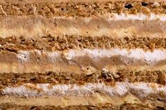 Перекрестный торт стоковые фотографии rf