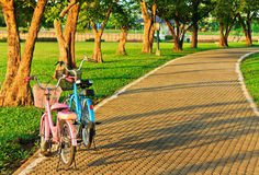 перемещение велосипеда Стоковое Изображение RF