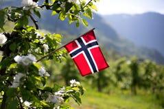 Перемещение вокруг Норвегии стоковые изображения rf