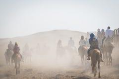 Перемещение в пустыне, Гизе, Египте Стоковые Фото