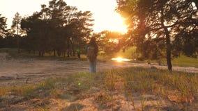 Перемещение девушки с рюкзаками на заходе солнца Женщина идет расположиться лагерем r Свободный пеший туризм остатков o Выходные  видеоматериал