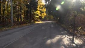 Перемещение леса осени автомобилем на дороге осенью 4K акции видеоматериалы