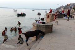 перемещение Индии Стоковая Фотография