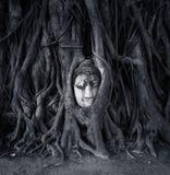 Перемещение к Таиланду, Ayutthaya Старая скульптура камня Будды дерева стоковое фото rf