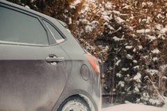 Перемещение снега леса зимы машины Стоковая Фотография RF