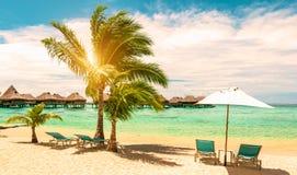 Перемещение, туризм и тропическая концепция летних каникулов стоковые изображения rf