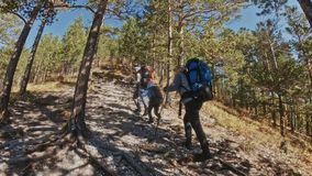 перемещения семьи Окружающая среда людей горами, реками, потоками Родители и дети идут используя trekking поляков человек и акции видеоматериалы