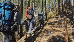 перемещения семьи Окружающая среда людей горами, реками, потоками Родители и дети идут используя trekking поляков человек и сток-видео