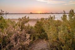 Перенесите залива Philips в лете с установкой солнца на море стоковое фото