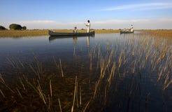Перепад Okavango - Ботсвана стоковое изображение rf