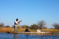Перепад Okavango Стоковое Фото