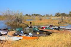 Перепад Okavango Стоковая Фотография
