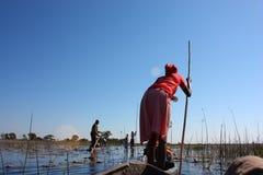 Перепад Okavango Стоковые Фотографии RF
