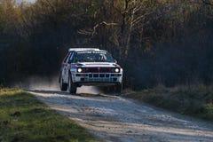 Перепад Integrale Lancia (нет 14) состязает на ежегодном ралли Стоковое фото RF