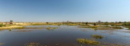 Перепад Okavango, Африка стоковые фото