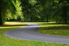 переплетать дороги путя Стоковая Фотография RF