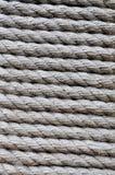 переплетенная веревочка Стоковые Изображения RF