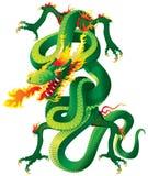 переплетенный дракон Стоковые Изображения