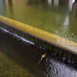 переполняя вода Стоковое фото RF